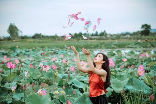 Woman Throwing Pink Petals #336390