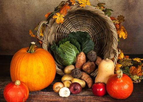Vegetable and Crops Beside Spilled Basket Free Photo