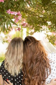 Two Women Leaning Side by Side Under Pink Petaled-flowering Plant #336730