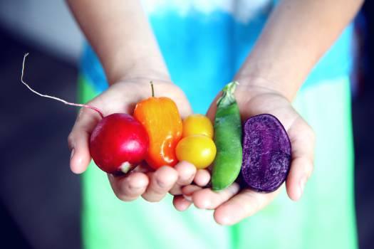 Tilt Shift Lens Photography of Five Assorted Vegetables Free Photo