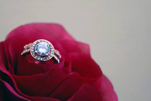 Closeup Photography of Clear Jeweled Gold-colored Cluster Ring on Red Rose Free Photo