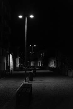 Grayscale Photography of Street Lights Along the Road Between Houses #337134