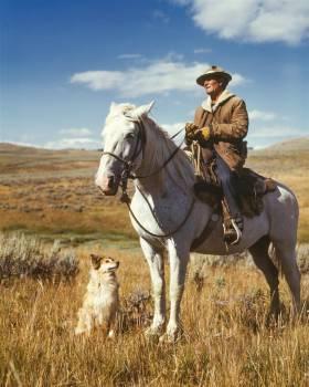 Man on White Horse Next to Dog on Grassy Field Free Photo