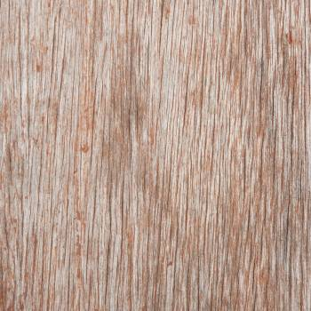 Closeup of a Wooden Surface #338544