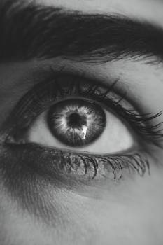 Grayscale Photography of Left Person's Eye Free Photo