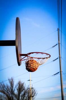 Basketball Net Free Photo
