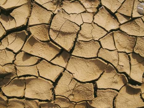Dry Soil #338812