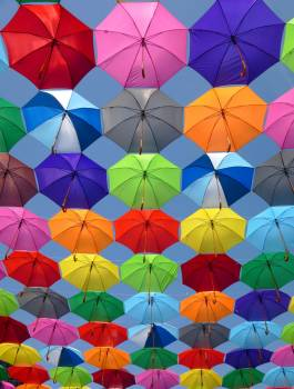 Pink Grey and Green Folding Umbrella Painting Free Photo