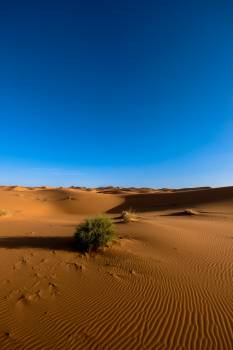 Photography of Sand Dunes Under Blue Sky Free Photo