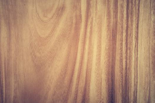 Brown Wood Panel #340174