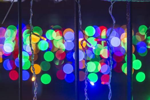 Close-Up Photo Of Christmas Lights Free Photo