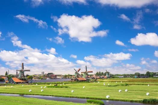 Green Grass Field #340862