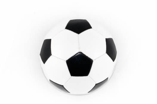 Black and White Soccer Ball Free Photo