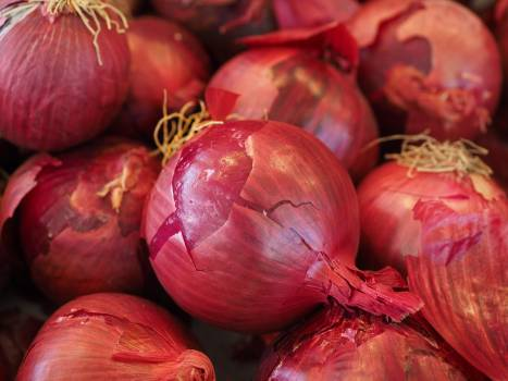 Red Onions #341903