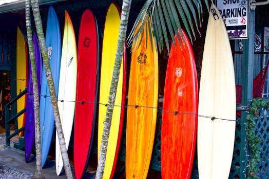 Assorted Colors Of Surfboard Free Photo