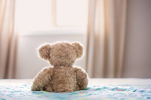 Brown Bear Plush Toy On Bed #342096