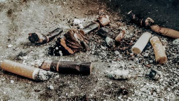 Cigarette Buts on Brown Soil #342173