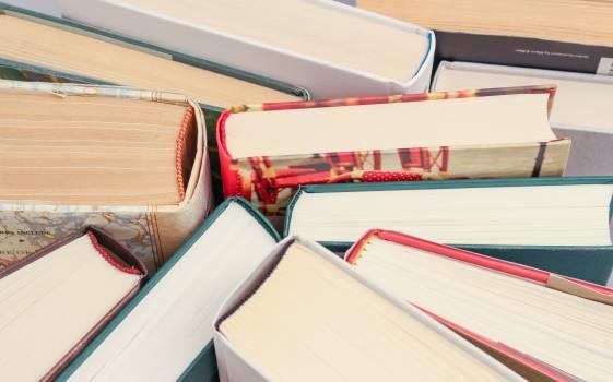 Assorted Books #342309
