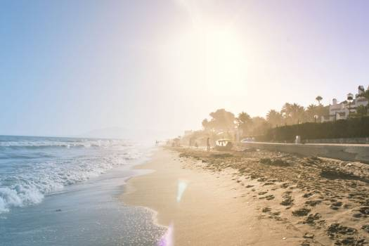 Seashore View #34286