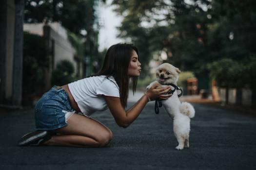 Darling Dog Happy Free Photo