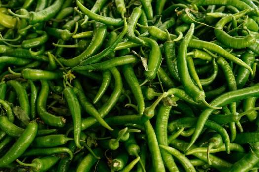 Green bean Fresh bean Pea #343309