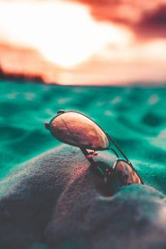 Sunglasses Water Insect Free Photo