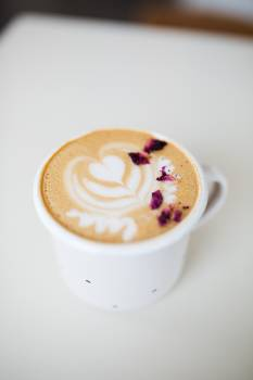 Vanilla Food Cup Free Photo