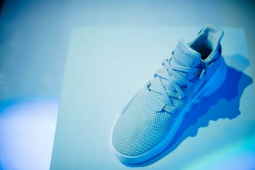 Fink Shoe Shoes Free Photo