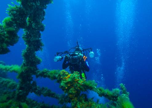 Swimmer Athlete Underwater #346422