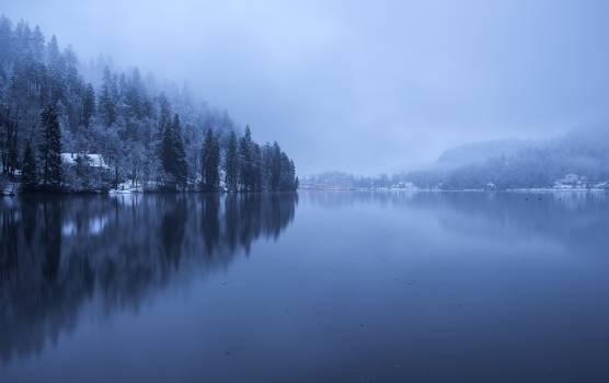 Lake Lakeside Shore Free Photo