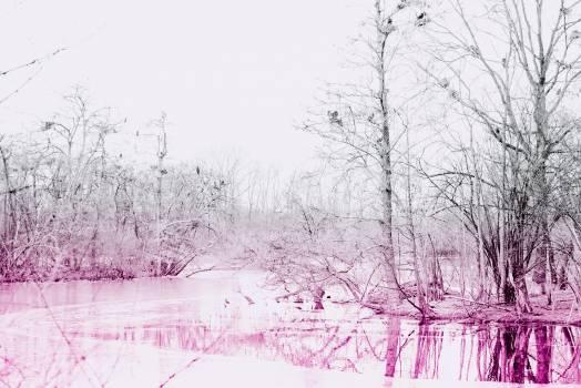 Snow Weather Winter #349714