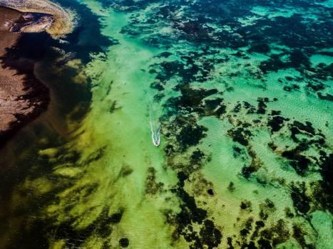 Reef Sea Coral reef #349722