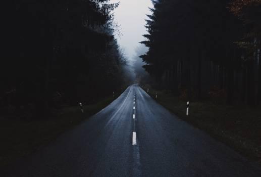 Expressway Road Highway #350050