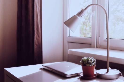 White Desk Lamp Next to Succulent Plant #35468