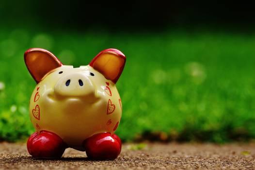 Brown Ceramic Piggy Bank #35600