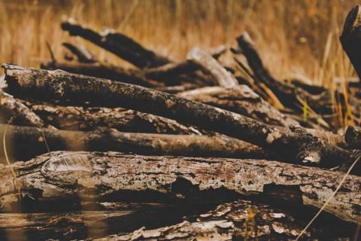 Landscape Rock Water #356053
