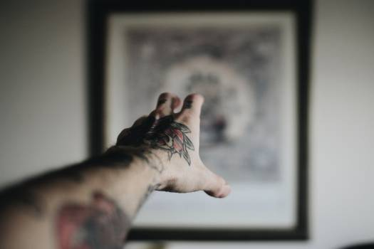 Tattoo People Person Free Photo