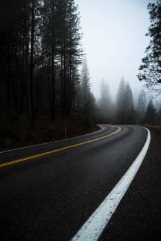 Bend Road Asphalt Free Photo
