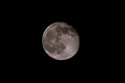 Full Moon #35628