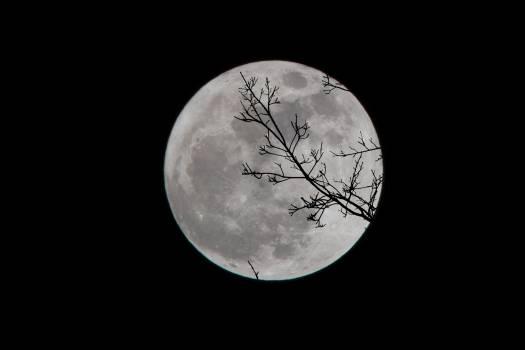 Moon Planet Globe Free Photo