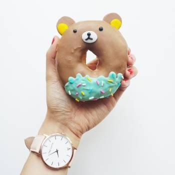 Accessory dessert donut doughnut #35796