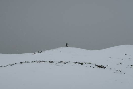Dune Sand Snow #358408