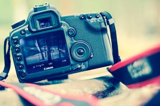 Selective Blur Photo Black Canon Dslr Camera Free Photo