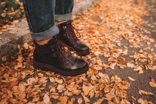 Footwear Boot Cowboy boot Free Photo