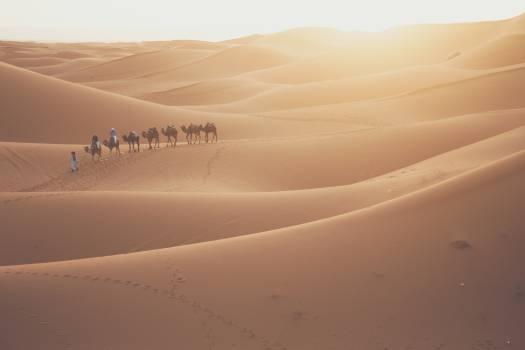 Dune Desert Sand Free Photo