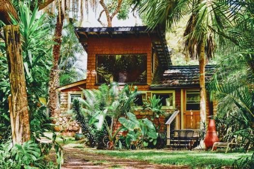 Garden Tree Building #364095