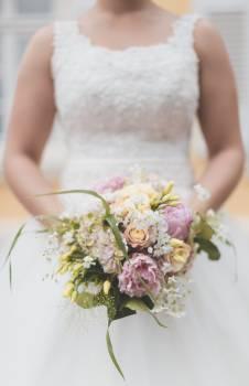 Bride Bouquet Abbess Free Photo