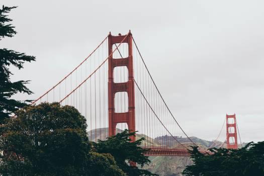 Suspension bridge Bridge Structure #364513