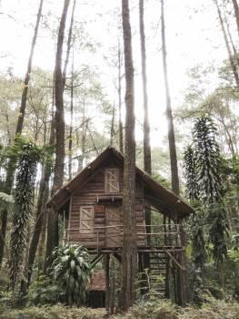 Building House Barn #364747