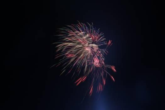 Firework Fireworks Night #366960